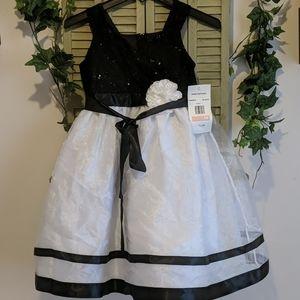 NWT! Beautiful Rare Editions girls dress